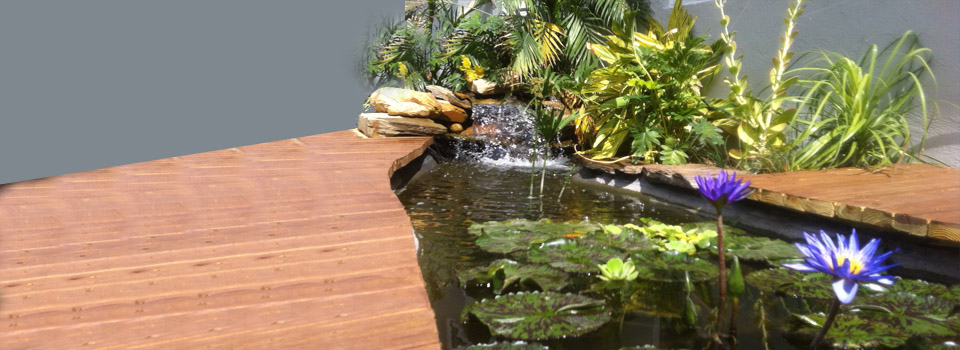 pond-waterfall-