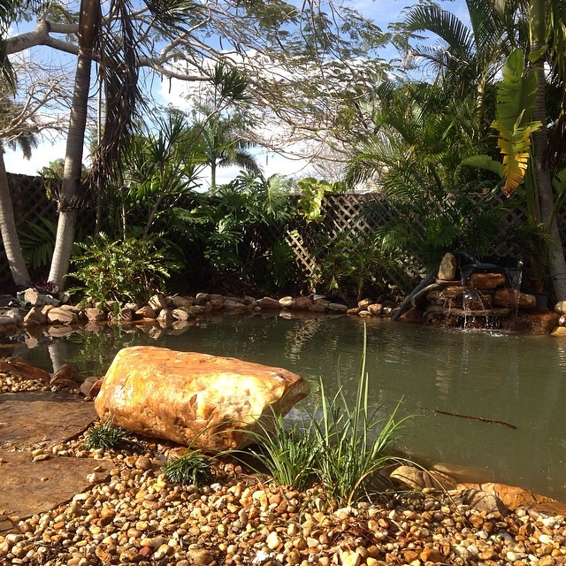 It's coming together #koipond #pond #pondpirates #bellasaquaticgardens #bellasponds #pondcontractor #ilovemyjob #ididthat #waterfall #backyardoasis #tropical